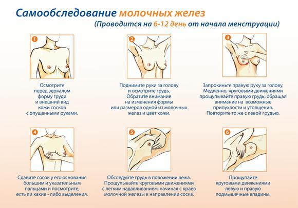 samoobsledovanie-molochnyh-gelez-2